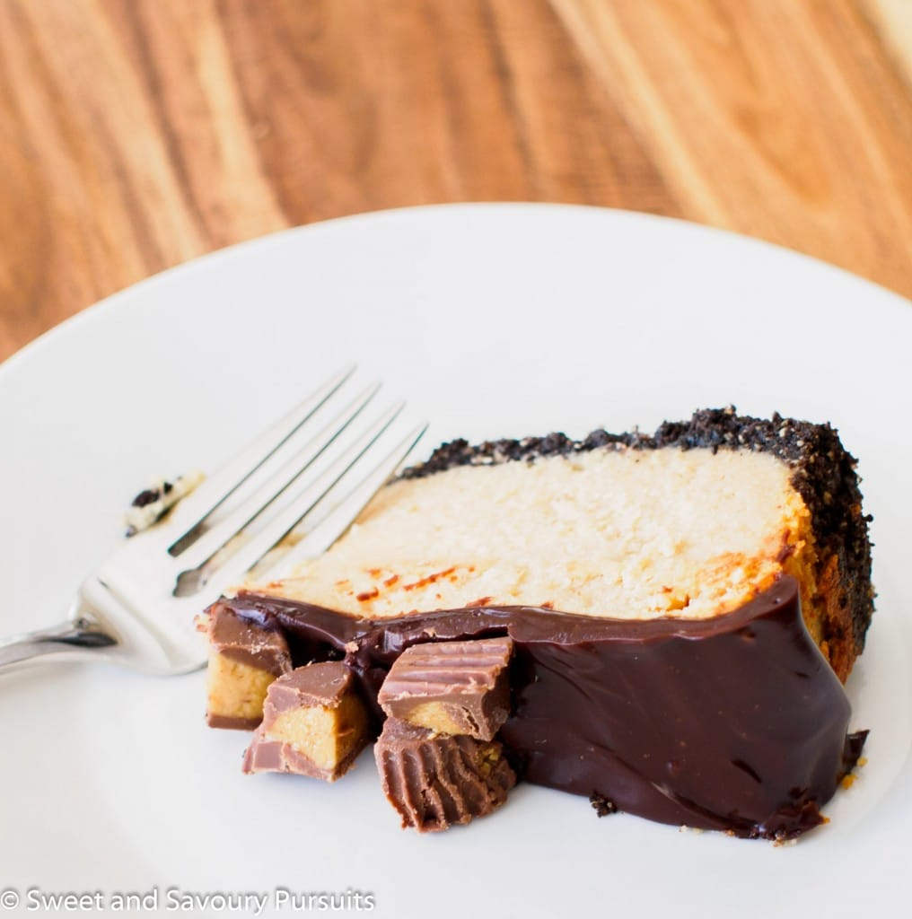 Slice of peanut butter and chocolate cheesecake.