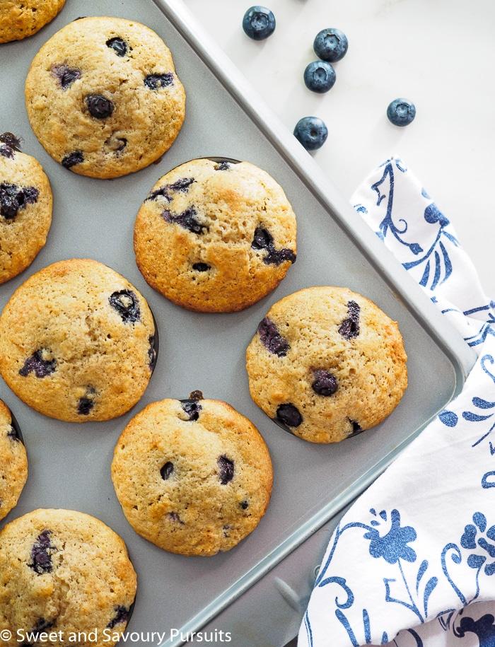 Whole Wheat Blueberry Lemon Muffins still in baking tray.