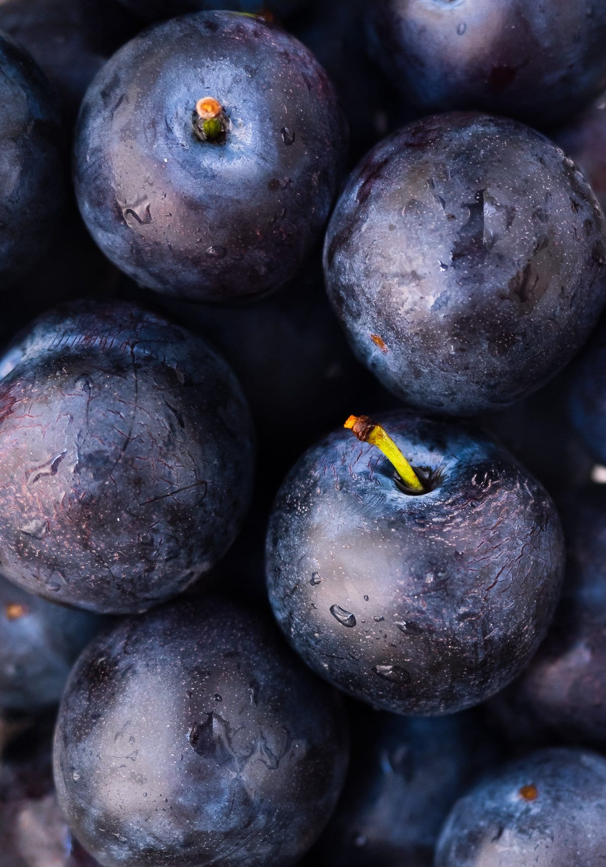 Close-up image of fresh plums.